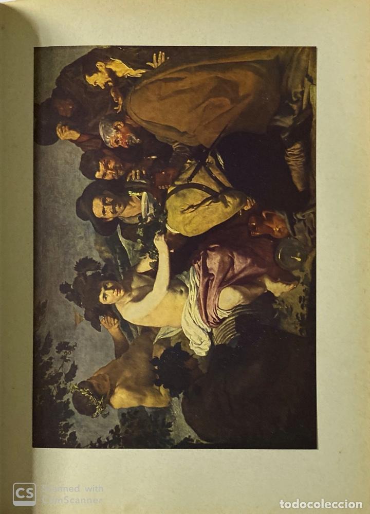 Libros de segunda mano: GALERIAS DE EUROPA. GALERIA DE PINTURAS DEL MUSEO DEL PRADO. 2ª ED. EDITORIAL LABOR. BARCELONA. - Foto 6 - 183792995