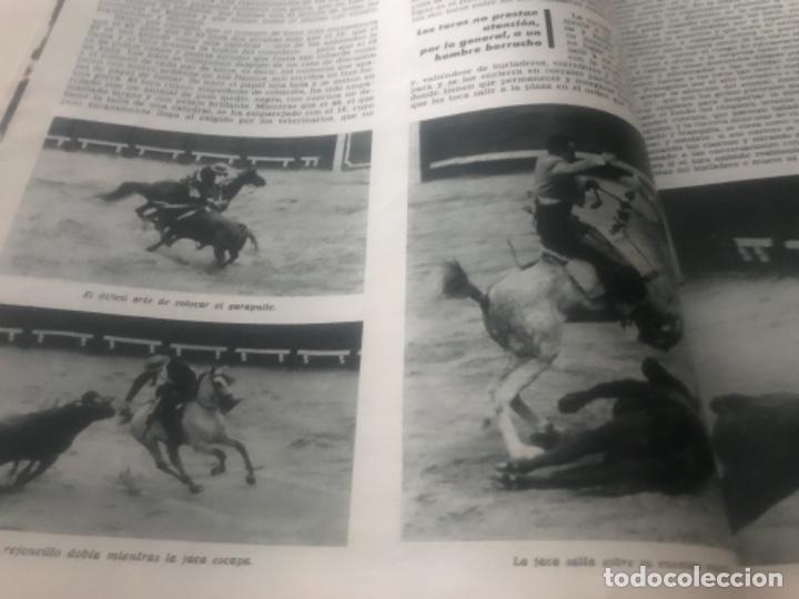 Libros de segunda mano: Hemingway Toros Picasso - Foto 8 - 187440082