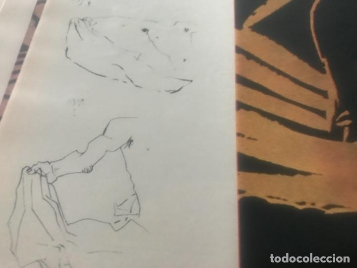 Libros de segunda mano: Hemingway Toros Picasso - Foto 18 - 187440082