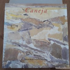 Libros de segunda mano: JUAN MANUEL CANEJA - FRANCISCO CALVO SERRALLER Y PALOMA ALARCÓ CANOSA. Lote 190413467