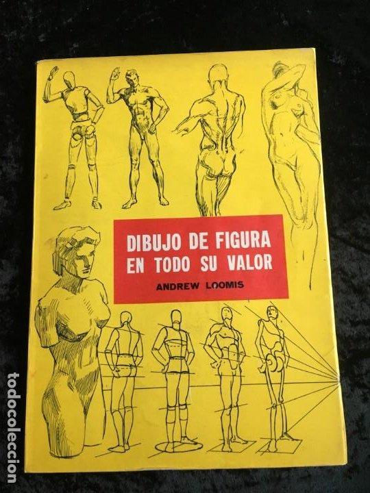 DIBUJO DE FIGURA EN TODO SU VALOR - ANDREW LOOMIS - HACHETTE - MUY ILUSTRADO - (Libros de Segunda Mano - Bellas artes, ocio y coleccionismo - Pintura)