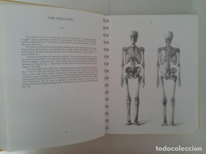 Libros de segunda mano: Anatomy for the artist. Anatomía para artistas - Foto 15 - 192860156