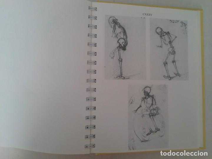 Libros de segunda mano: Anatomy for the artist. Anatomía para artistas - Foto 24 - 192860156