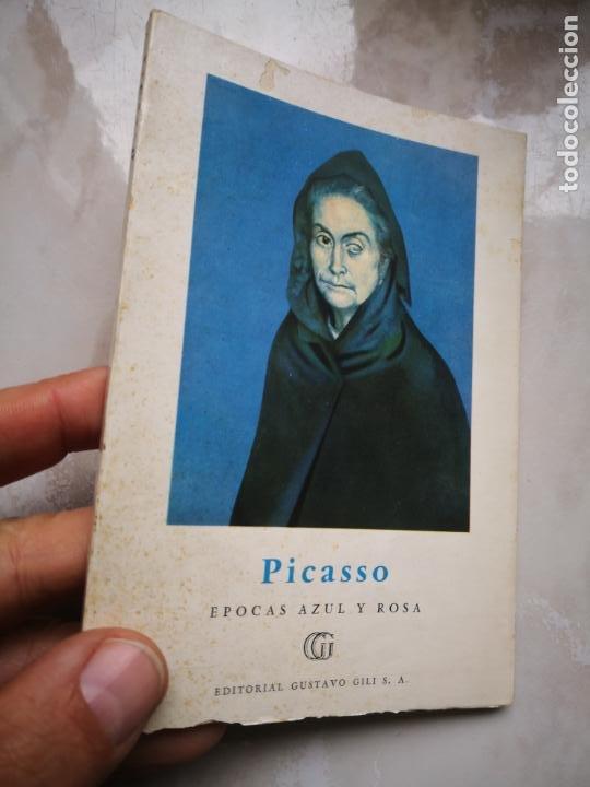 COLECCION MINIA EDITORIAL GUSTAVO GILI SA (Libros de Segunda Mano - Bellas artes, ocio y coleccionismo - Pintura)