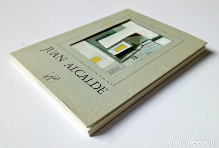 JUAN ALCALDE. EDICIONES NAUTA 1976 - CATÁLOGO OBRA Y TEXTO DE Mª FORTUNATA PRIETO BARRAL (Libros de Segunda Mano - Bellas artes, ocio y coleccionismo - Pintura)