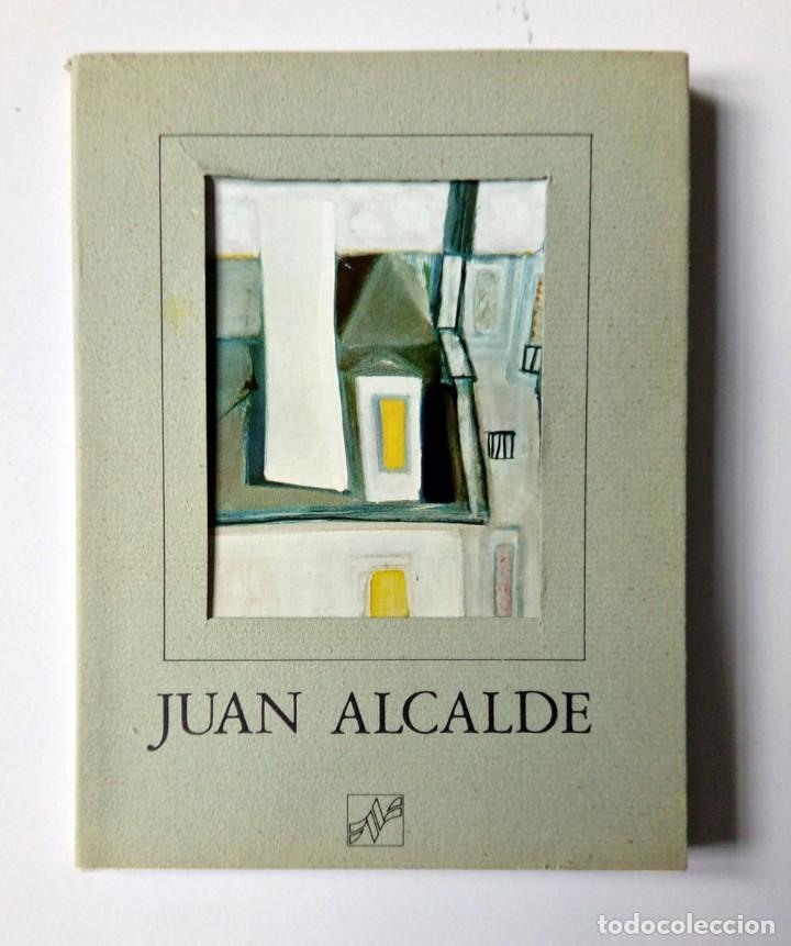 Libros de segunda mano: JUAN ALCALDE. EDICIONES NAUTA 1976 - CATÁLOGO OBRA Y TEXTO DE Mª FORTUNATA PRIETO BARRAL - Foto 2 - 194341603