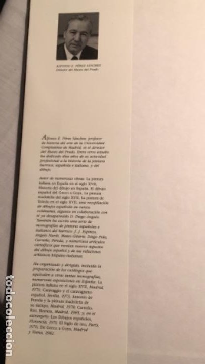 Libros de segunda mano: GOYA. ALFONSO E.PÉREZ SANCHEZ. PERFILES DEL ARTE. PLANETA. CON SOBRECUBIERTA - Foto 2 - 194615140