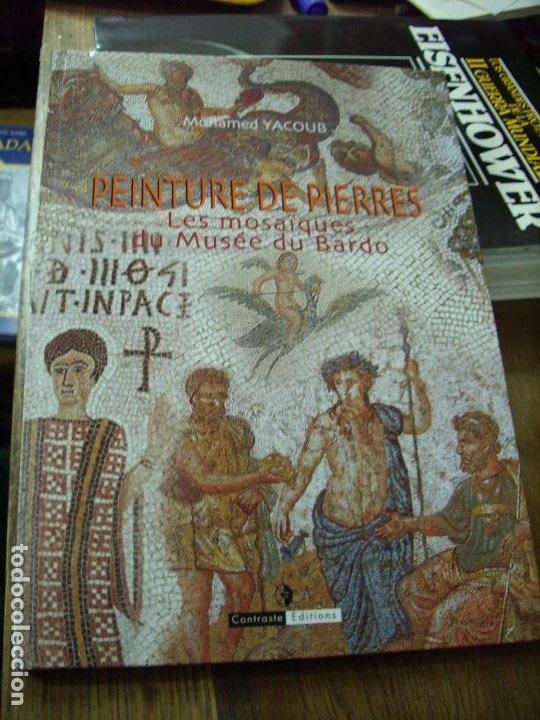 PEINTURE DE PIERRES, MOHAMED YACOUB. EN FRANCÉS. EP-240 (Libros de Segunda Mano - Bellas artes, ocio y coleccionismo - Pintura)