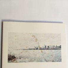 Libros de segunda mano: FERNANDO MANSO . LUZ OXIDADA . GALERÍA GAYLUS MADRID 2014 . PINTURA SIGLO XXI. Lote 195282706
