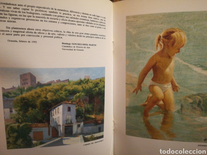 Libros de segunda mano: Pintura de Horacio Capilla Arguelles Madrid 1992 - Foto 2 - 195511393