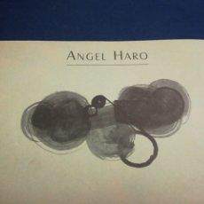 Libros de segunda mano: ANGEL HARO MURCIA 1995 TEXTOS DE CIPRIANO TORRES. Lote 195512465
