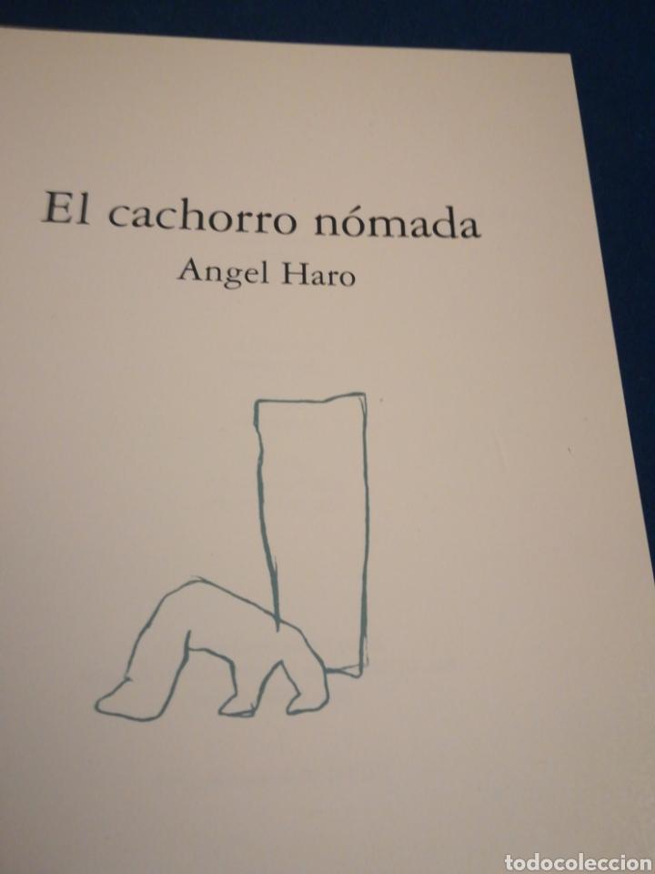 Libros de segunda mano: El cachorro Nómada Ángel Haro Zaragoza 1994 - Foto 2 - 195512625