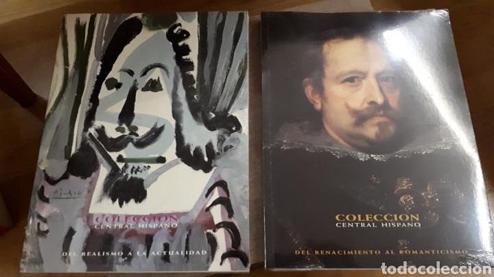 COLECCIÓN CENTRAL HISPANO PINTURA - DOS VOLÚMENES (Libros de Segunda Mano - Bellas artes, ocio y coleccionismo - Pintura)