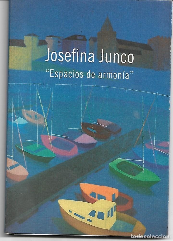 JOSEFINA JUNCO: ESPACIOS DE ARMONÍA (Libros de Segunda Mano - Bellas artes, ocio y coleccionismo - Pintura)