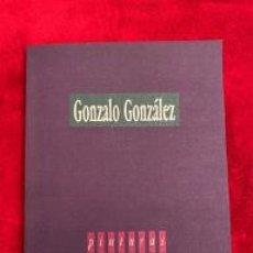 Libros de segunda mano: GONZÁLO GONZÁLEZ – PINTURAS. Lote 207444840