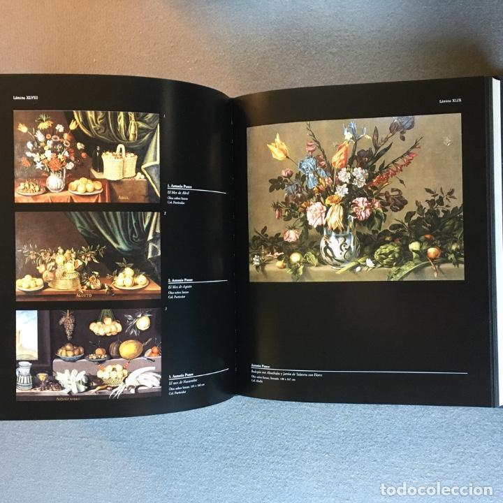 Libros de segunda mano: Arte y Naturaleza. El Bodegón Español en el Siglo de Oro. Peter Cherry. - Foto 13 - 209035525