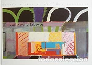 JUAN NAVARRO BALDEWEG XUNTA DE GALICIA, SANTIAGO DE COMPOSTELA, 2002. CARTONÉ EDITORIAL. PERFECTO (Libros de Segunda Mano - Bellas artes, ocio y coleccionismo - Pintura)