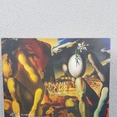 Libros de segunda mano: LOS TESOROS DE SALVADOR DALI LA HISTORIA ILUSTRADA DE SALVADOR DALI VIDA Y OBRA MONTSE AGUER.. Lote 222714052