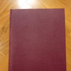 Libros de segunda mano: PINTORES ASTURIANOS JULIA ALCAYDE MONTOYA / CAROLINA DEL CASTILLO DÍAZ. Lote 223766625