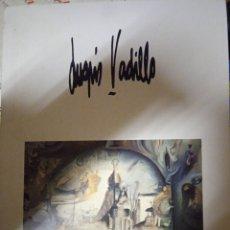 Libri di seconda mano: ARTISTA LUGRIS VADILLO LIBRILLO CATALOGO. Lote 239728320