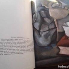 Libros de segunda mano: 2 LIBROS ANTOLOGIA DE LA PINTURA SALVAT. Lote 244869540