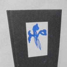 Libros de segunda mano: IRIS DE PASCUA. JOAN HERNANDEZ PIJUAN. FUNDACION JUAN MARCH. 2008. Lote 245723135