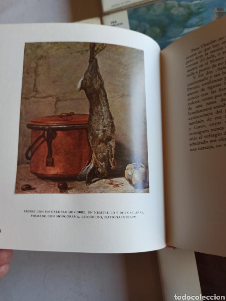 Libros de segunda mano: SKIRA: COL. LE GOUT DE NOTRE TEMPS EL GUSTO DE NUESTRO TIEMPO LOTE 25 LIBROS 18 FRANCÉS 7 CASTELLANO - Foto 14 - 287659633