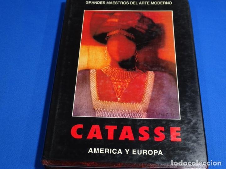 CARLOS CATASSE. AMÉRICA Y EUROPA. 257 PAG. (Libros de Segunda Mano - Bellas artes, ocio y coleccionismo - Pintura)