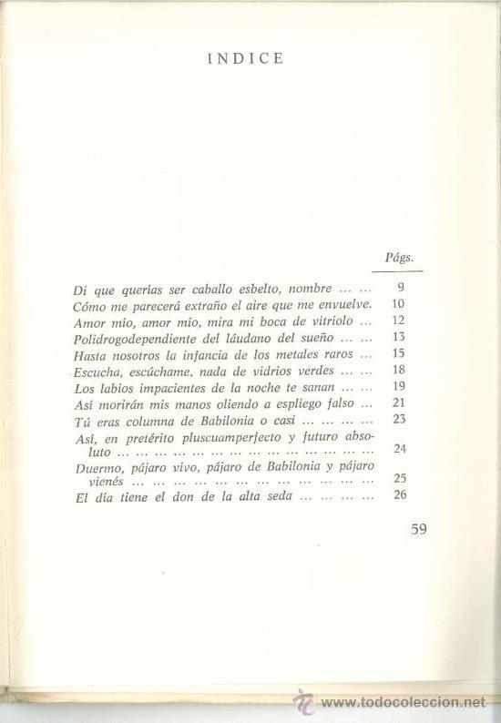 Libros de segunda mano: DE UNA NIÑA DE PROVINCIAS QUE SE VINO A VIVIR EN UN CHAGALL-Blanca Andréu-Dedicado autora1980.Poesía - Foto 5 - 27259239