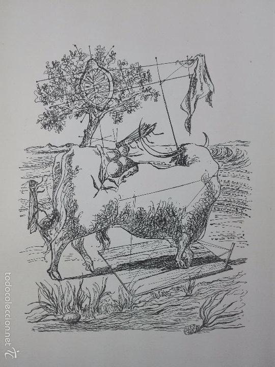 Libros de segunda mano: CUANDO PASA EL TORO - MANUEL BENITEZ CARRASCO - DECICADO Y FIRMADO - 25 X 17 CM. - 112 PP.- - Foto 4 - 57272669