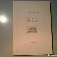 Libros de segunda mano: ADOLFO CASTAÑO. ESPACIO ÍNTIMO. DEDICATORIA AUTÓGRAFA. 1ª ED. RAFAEL CANOGAR, LUCIO MUÑOZ...RARO. Lote 62449036