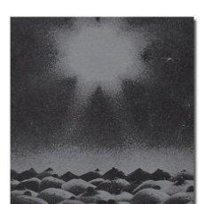 Libros de segunda mano: MIGUEL FERNÁNDEZ.– ATENTADO CELESTE. DANTE LIBROS, 1975. BUEN ESTADO. Lote 73642199