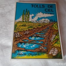 Libros de segunda mano: TOLLS DE CEL POEMES AMALIA CRUZATE. Lote 89365052