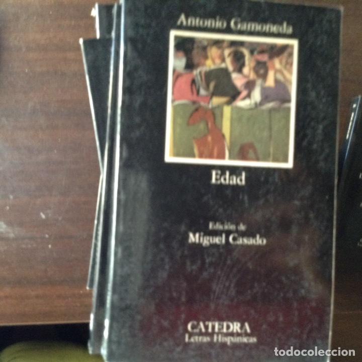 EDAD. ANTONIO GAMONEDA (Libros de Segunda Mano (posteriores a 1936) - Literatura - Poesía)