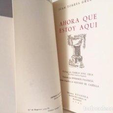 Libros de segunda mano: TORRES GRUESO: AHORA QUE ESTOY AQUÍ (1960-1964) PRÓLOGO DE C J CELA; ILUSTRADO POR BENJAMÍN PALENCIA. Lote 111241003