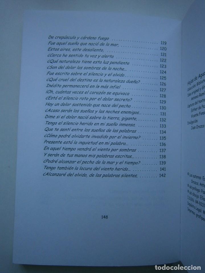 Libros de segunda mano: HOJAS DE AGUA Y FUEGO Biblioteca poetica Sevilla 2000 Esther de Paz Vicente Fonseca Juan Orozco - Foto 11 - 128884627