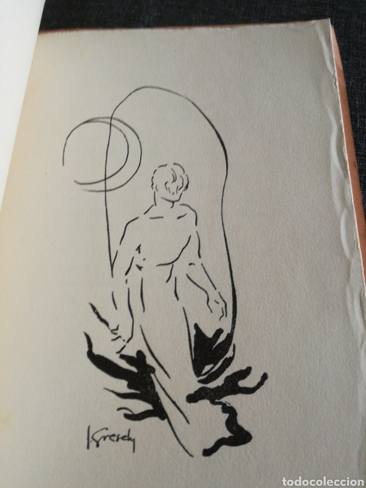 Libros de segunda mano: LAIGUA NEGRA - RAMON FOLCH I CAMARASA , EDICIÓ NUMERADA - IL. JOSEP GRESELY - Foto 4 - 135585014