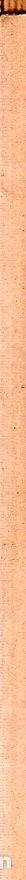 Libros de segunda mano: JUEGOS DE AGUA. DULCE MARIA LOYNAZ. 1º EDICION. CON DEDICATORIA Y FIRMA DEL AUTOR. 1947. LEER. - Foto 7 - 137973490