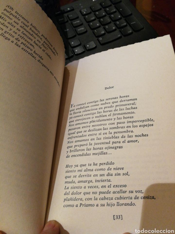 Libros de segunda mano: Poemas (1933-1945) PREVELAKIS, Pandelís Editorial: Kyklades Año: 1986 - Foto 2 - 138888090