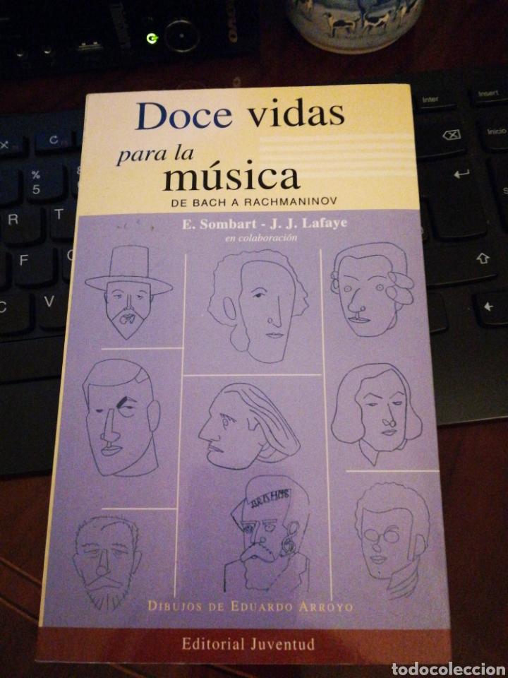 DOCE VIDAS PARA LA MÚSICA, DE BACH A RACHMANINOV, JJ. LAFAYE Y E. SOMBART. ILUSTRACION E. ARROYO (Libros de Segunda Mano (posteriores a 1936) - Literatura - Poesía)