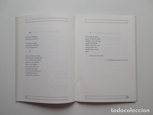Libros de segunda mano: ANTONIO GAMONEDA, POEMA - Foto 4 - 140801542