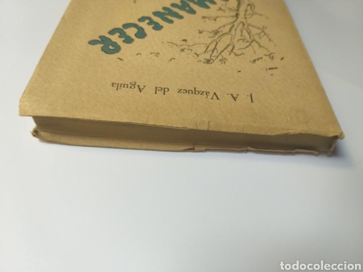 Libros de segunda mano: Poesía . Amanecer José Antonio Vázquez del Águila 1958 - Foto 5 - 140865190