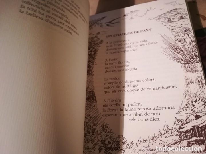 Libros de segunda mano: La finestra del meu cor - Rosa M. Mestres i Tió - en català - Foto 5 - 148575018