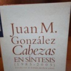 Libros de segunda mano: EN SÍNTESIS (1985-2005), JUAN M. GONZÁLEZ CABEZAS. Lote 155787442