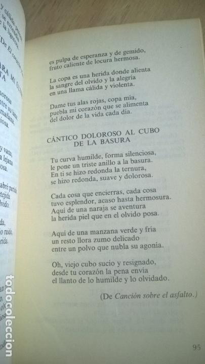 Libros de segunda mano: LIRICA ESPAÑOLA DE HOY. JOSE LUIS CANO. CATEDRA. - Foto 5 - 58069156