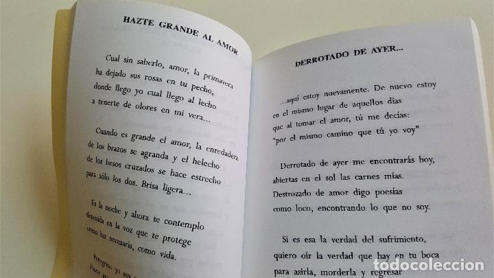Libros de segunda mano: SIEMBRA DE SONETOS AL ALBA - Foto 3 - 169223048