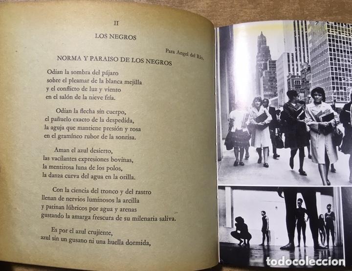 Libros de segunda mano: POETA EN NUEVA YORK - LORCA - FOTOGRAFIAS MASPONS UBIÑA - LUMEN PALABRA E IMAGEN - 1966 - Primera ed - Foto 7 - 172152289