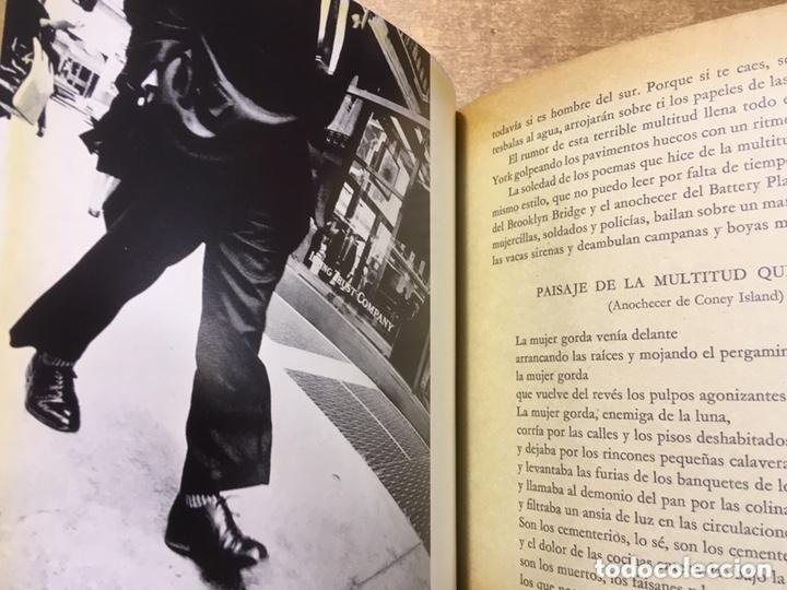 Libros de segunda mano: POETA EN NUEVA YORK - LORCA - FOTOGRAFIAS MASPONS UBIÑA - LUMEN PALABRA E IMAGEN - 1966 - Primera ed - Foto 11 - 172152289