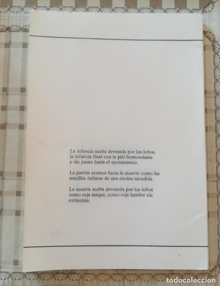 Libros de segunda mano: Tratado de licantropía. Poesía - Rodolfo Häsler - Foto 2 - 172165134