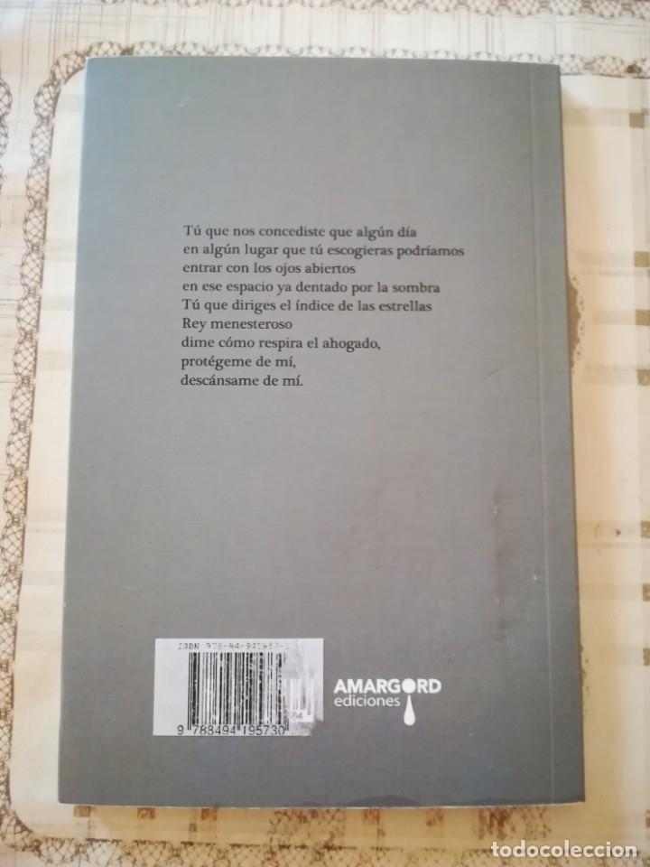 Libros de segunda mano: Libro de la niebla - Gloria Trinidad - Poesía - Foto 2 - 176072347